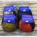 Camaleonte (4  colors)